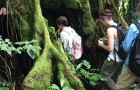 Costa Rican jungle becomes living classroom for biology students article thumbnail