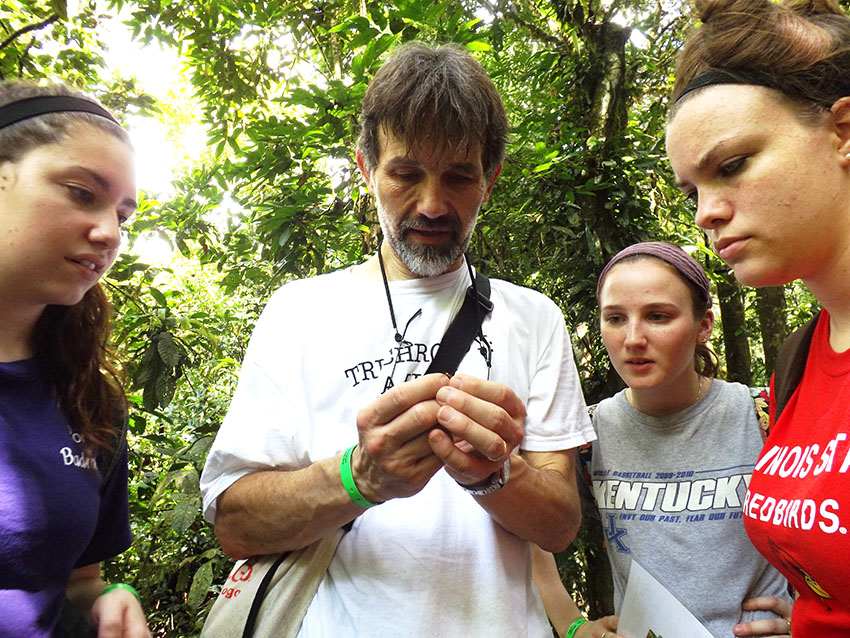 The group gets a closer look at an army ant.