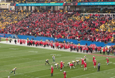 Fans at FCS title game