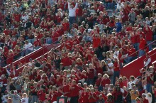 Redbird fans in the stands