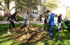 Students at An Arbor Day tree planting event