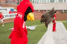 Reggie Redbird has a moment with himself