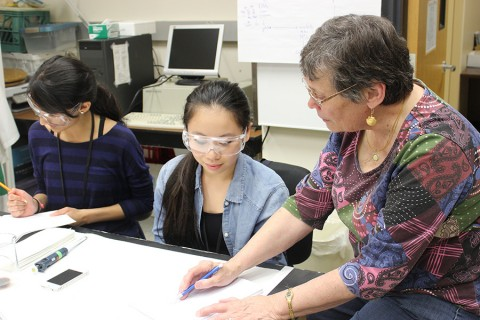 Summer Research Academy draws students from across Illinois article thumbnail