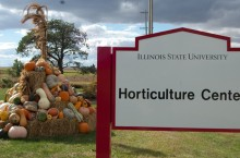 image of Autumnal Festival at the Horticulture Center