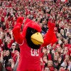 Reggie Redbird gearing up the crowd at a game
