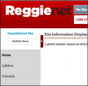 Instructors will find it easier to publish their courses in ReggieNet.