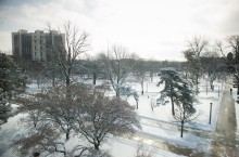 Snow on Quad 2016