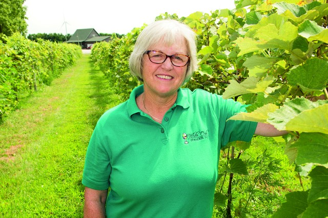 Unique field: Alumna's vineyard dream takes root in Illinois article thumbnail