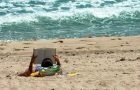 Redbird reads: Summer suggestions from faculty article thumbnail