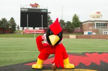 Reggie Redbird hiking football