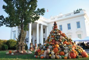 pumpkins at White House
