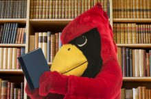 Reggie Redbird reading a book