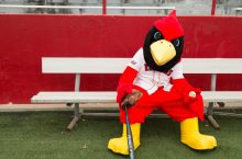 Reggie Redbird with baseball and bat.