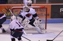 Charleston Redbirds night with South Carolina Stingrays, March 25 article thumbnail