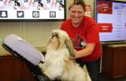 Get PAWSitively Stress Free during finals week, May 8 and 9 article thumbnail