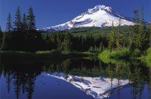 Mt. Hood reflected in a lake