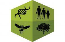 logo of DNA, people, bee and tree