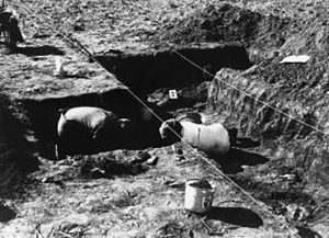Illinois State University students study the remains at the Noble-Wieting archaeological site in 1972. (Caption and photo courtesy of the McLean County Museum of History)
