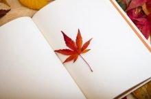 white pages in a book with maple leaf