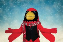 Reggie Redbird in scarf and snow