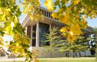 Milner Library seen through trees turning to a golden yellow in fall