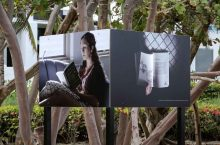 a tree-lined path with pictures of women reading books.