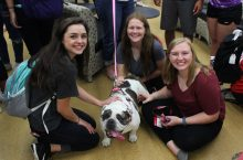 Students and therapy dog Bessie