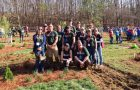Illinois State agriculture students shine at National Collegiate Landscape Competition article thumbnail