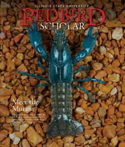 Redbird Scholar cover Volume 4 Issue 1 Fall 2018 Meet the Mutant: ISU scientists are hoping an all-female, self-cloning crayfish species holds the genetic key to unlocking mysteries in the human brain. Page 20