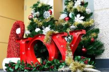 Holiday decorations: trees, Santa hat, and the word Joy in the CPA Loby