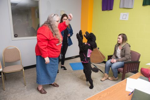 Main Street College to explore canine behavior, behavioral psychology article thumbnail