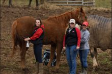 Emma Nicholas and Mariah Dietz at the Kentucky Equine Management Internship program