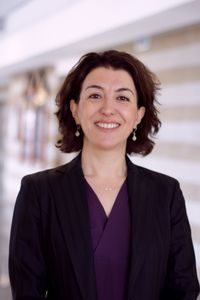 Aysen Bakir in the College of Business