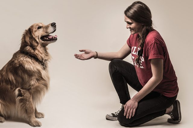 ISU students are working with Psychology Professor Valerie Farmer-Dougan to transform rescue dogs into foster pets.