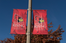 Redbirds Rising Banners on lamp posts