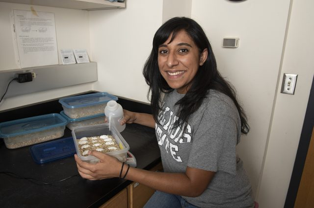 Rosario Marroquin-Flores, a doctoral student in the School of Biological Sciences, started a local chapter of SACNAS to help further the careers and development of student researchers.