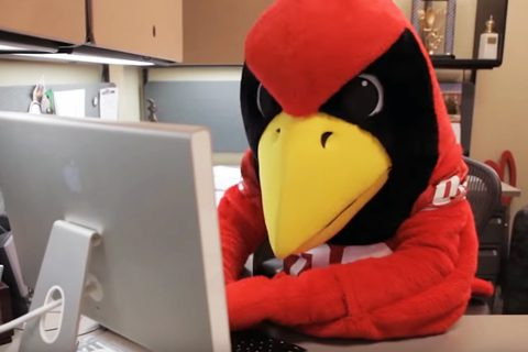 Launching of Illinois State Insights, free lifelong learning webinars for alumni and friends article thumbnail