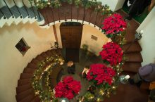poinsettias don the spiral staircase
