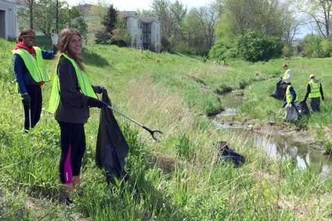 Students cleaning up a waterway