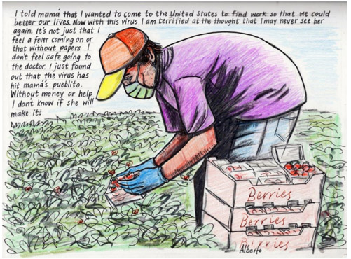 Text on image of farm worker reads: I told mama that I wanted to come to the United State to find work so that we could better our lives. Now with this virus I am terrified at the thought I may never see her again. It's not just that I feel a fever coming on or that without papers I don';t feel safe going to the doctor. I just found out that the virus has hit mam's pueblito. Without monet or help I don't know if she will make it